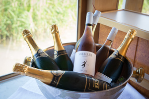 Weingipfel 2015 - Boat trip across Lake Neusiedl with Austrian sparkling wines, Illmitz to Rust, Burgenland