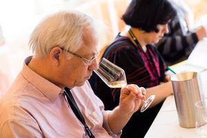 """Weingipfel 2017: Seated Vertical Tasting """"Wachau - Riesling"""", Presented by: Roman Horvath MW (Managing Director Domäne Wachau), Emmerich Knoll jun. (Wine Grower) and Luzia Schrampf (Wine Journalist), Domäne Wachau/Kellerschlössl, Dürnstein"""