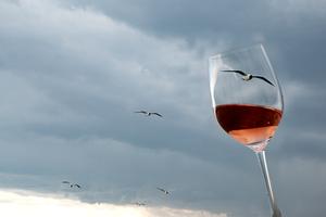 Weinglas Rosé Vögel