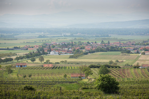 Wagram, Niederösterreich