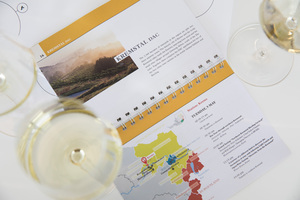 "Weingipfel 2017: Seated Tasting ""Northern Kremstal Riesling Vertical""; Presented by: Peter Schleimer (Chief Editor Vinaria) and Willi Klinger (Managing Director of AWMB), Weinkompetenzzentrum, Krems"