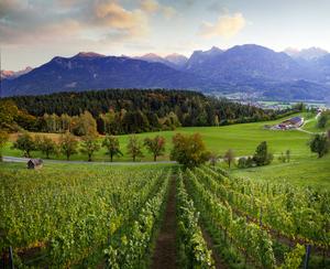Röns, Vorarlberg, Bergland