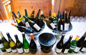Weingipfel 2019, Conference, Palais Niederösterreich, Walking Lunch with Wine Bars