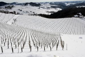 Eckberg, Südsteiermark, Steiermark