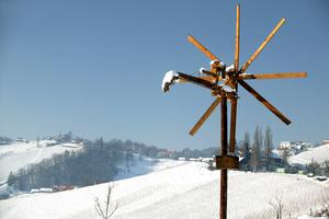 Sernau - Weingarten im Winter