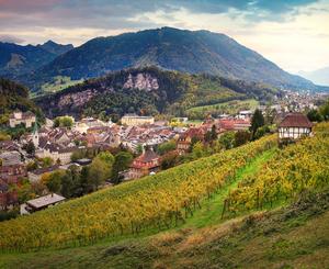 Feldkirch, Vorarlberg, Bergland