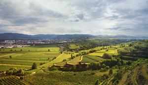 Niederösterreich, Kremstal, Seinwandl vor Krems