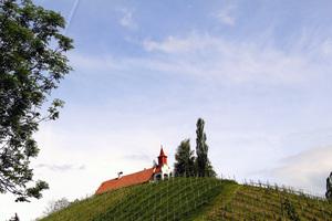 Landschaft in der Südsteiermark
