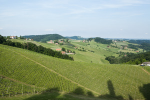 Weingipfel 2015 - Vineyard Hike and Tasting in Leutschach, Experience terroir (sneakers recommended)