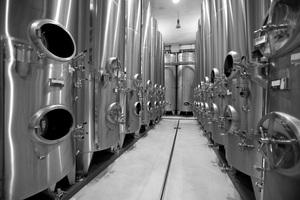 Weinkeller - Weingut Tement
