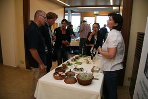 Weingipfel 2011 Steiermark & Thermenregion - Rundreise durch das kulinarische Vulkanland