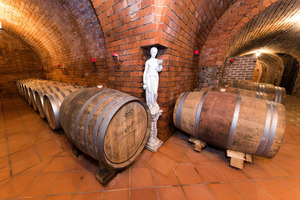 """Weingipfel 2017: Introduction to Weinviertel and Walk Around Tasting """"Specific Appellations and Grape Varieties"""", Winery Hagn, Mailberg"""
