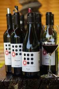 Weingipfel 2015 - Vineyard Rally through Mittelburgenland, with classic and Reserve wines from Mittelburgenland DAC,m Guided and presented by winemakers Deutschkreutz, Neckenmarkt and Horitschon