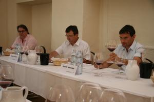 Weingipfel 2011 Steiermark & Thermenregion - Masterclass Pinot Noir