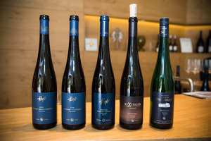 Weingipfel 2017: Visit of the Wineries Högl and Hirtzberger (2 groups), Spitz, Wachau