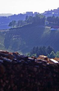 Impressionen Südsteiermark