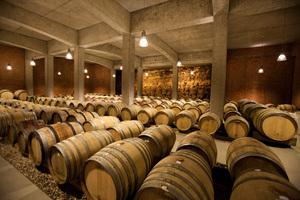 Weingipfel STMK 2009 - Weingut Tement, Verkostung Sauvignon blanc