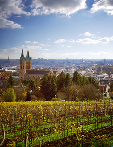 Wien, Grinzing, Hungerberg
