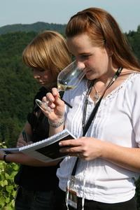 Weingipfel 2011 Steiermark & Thermenregion - Riedenwanderung am Pössnitzberg