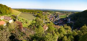 """Weingipfel Reise Steiermark Weingipfel 2017: In-Depth Tasting """"Steiermark Traminer"""", Vinothek and Weinbaumuseum Klöch"""