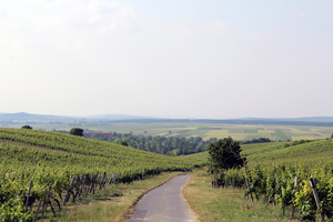 Mittelburgenland, Burgenland