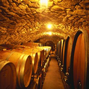Weinkeller mit Gewölbe (Weingut Kerschbaum)