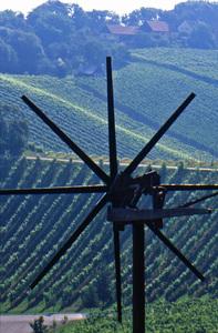 Weingärten mit Klapotetz - typisches Windrad in der Südsteiermark