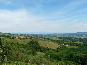 Weingipfel 2011 Steiermark & Thermenregion - Sulmtaler Kapaun mit weißen Burgundersorten