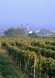 Sooß, Thermenregion, Niederösterreich