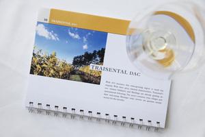"Weingipfel 2017: Light Lunch with Open Wine Tasting ""Diversity from the Traisental"", Gasthaus Nibelungenhof, Traismauer"