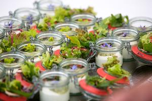 Weingipfel 2015 - Light Lunch mit österreichischen Bioprodukten mit Winzern, Gut Oberstockstall, Kirchberg am Wagram