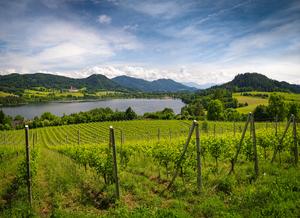 Der Längsee, Kärnten, Bergland