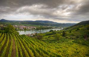 Niederösterreich, Kremstal, Grillenparz