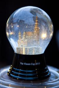 Schneekugel mit Stephansdom - VieVinum Cup 2010