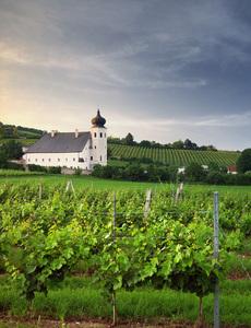 Niederösterreich, Thermenregion, Freigut-Thallern