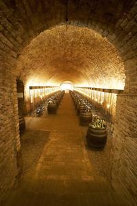 Kellergewölbe mit Fässern