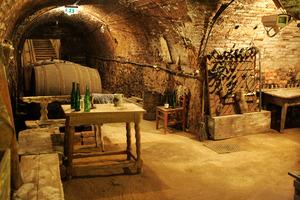 Weingipfel 2011 Discover Wine Wonderland Austria - Sparkling Wine Reception and short visit to the Loisium Wine Museum