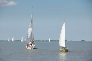 Boote am Neusiedlersee